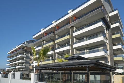 New Luxurious Apartments for Affordable Prices in Kargicak, Alanya