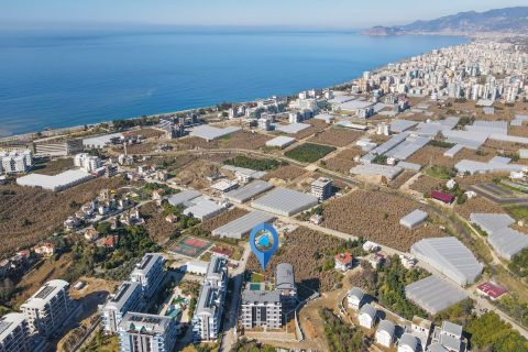 Peaceful Apartments For Sale in Kargicak, Alanya